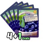 Blueberry Essence Mask Pack