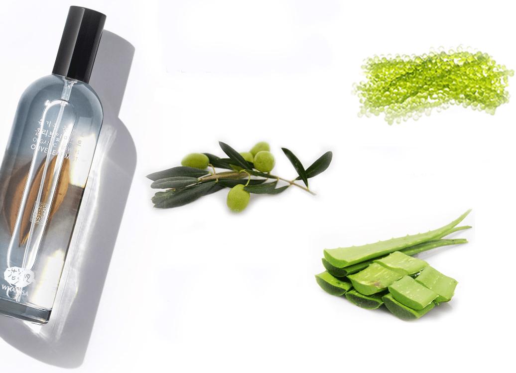 whamisa-organic-olive-mist.jpg